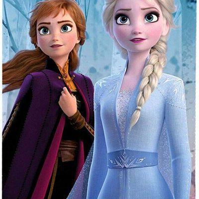 Toalla Frozen ll Disney Microfibra la casita de dumbo